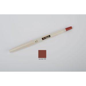 مداد لب ضد حساسيت و ضد آب شماره 100 روژينا